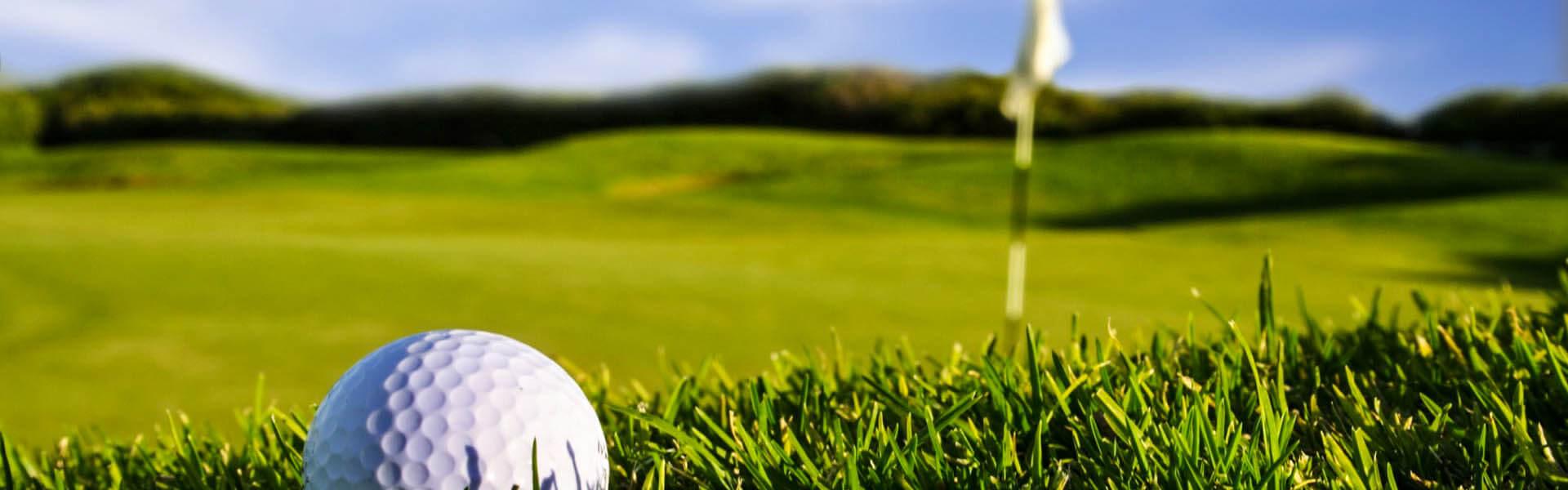 Golfing in Green Delhi